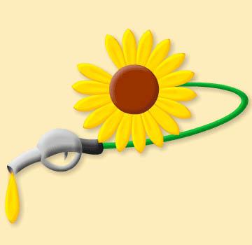 L'image «http://ecologie.nature.free.fr/images/autres/bio%20carburant.jpg» ne peut être affichée, car elle contient des erreurs.