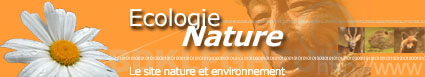 Ecologie Nature